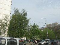 Алтуфьево (фото 33)