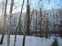 Беляево (фото 8)