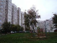 Чехов (Фото 12)