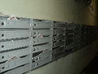 DSC01929