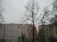 Ховрино (фото 25)