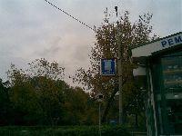 Ивановское (фото 1)