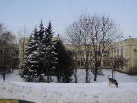 Коньково (фото 36)