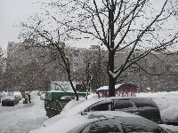 Коньково (фото 6)
