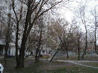 Лианозово (фото 23)