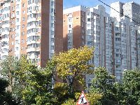 Ломоносовский (фото 12)