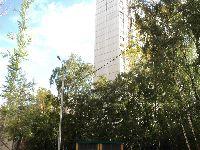 Ломоносовский (фото 48)