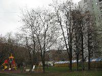 Лосиноостровский (фото 13)
