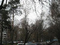 Лосиноостровский (фото 8)