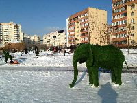 Москва - Новокосино (фото 19)
