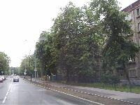 Москва - Сокольники (фото 04)
