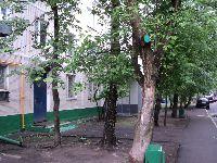 Нагатинский Затон (фото 34)