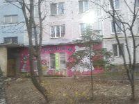 Новоивановское-Немчиновка (фото 06)