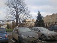 Новоивановское-Немчиновка (фото 12)