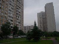 Новопеределкино - Фото0518