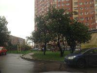 Щукино (фото 239)