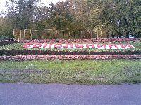 Сокольники (фото 2)