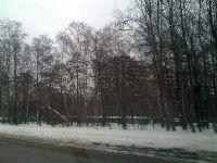 Сокольники (фото 7)