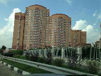 Совхоз им. Ленина (фото 09)