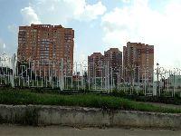 Совхоз им. Ленина (фото 24)