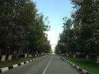 Совхоз им. Ленина (фото 33)