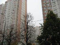 Тропарево-Никулино (фото 31)