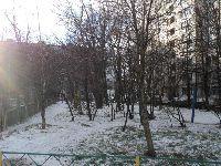 Тушино Северное (фото 20)