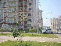 Внуково (фото 32)