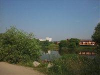 Внуково (фото 52)