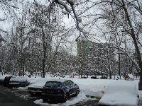 Восточное Бирюлево (фото 9)